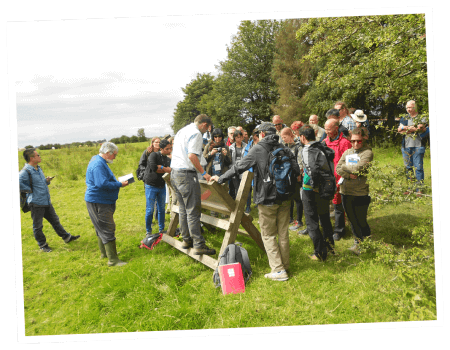 A college group tour of Rathcroghan